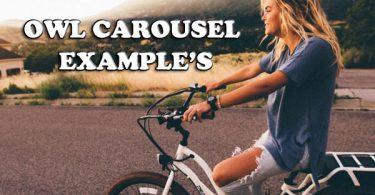 11+ Responsive owl carousel example's